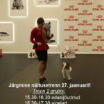 27_mai_näitusetrenn