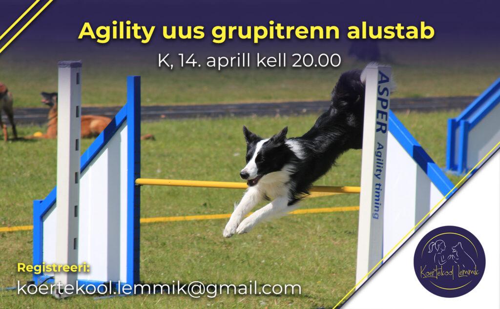 agility aprill