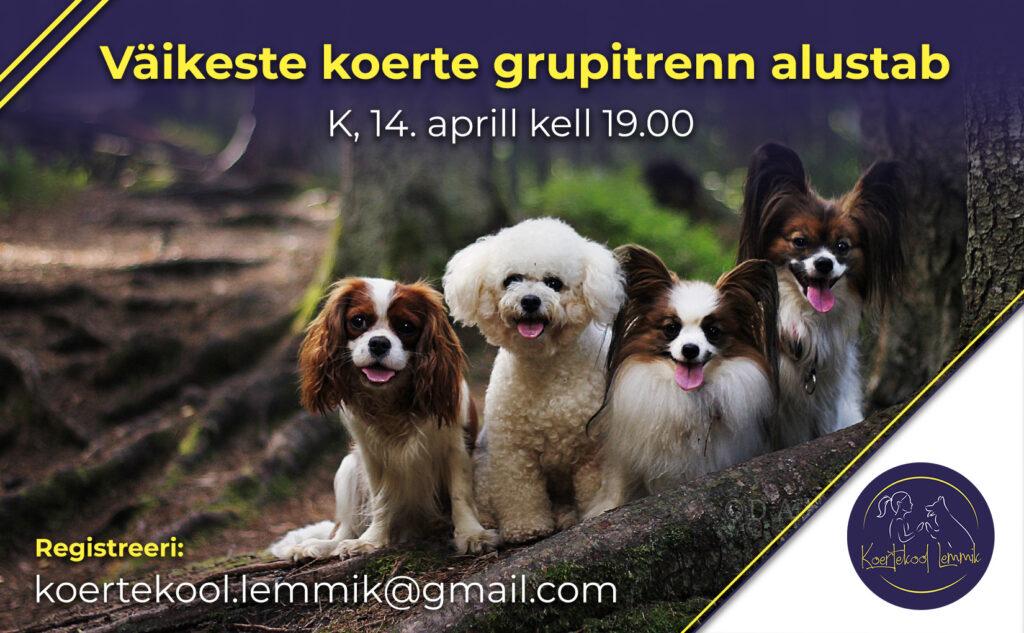 väikeste koerte trenn aprill
