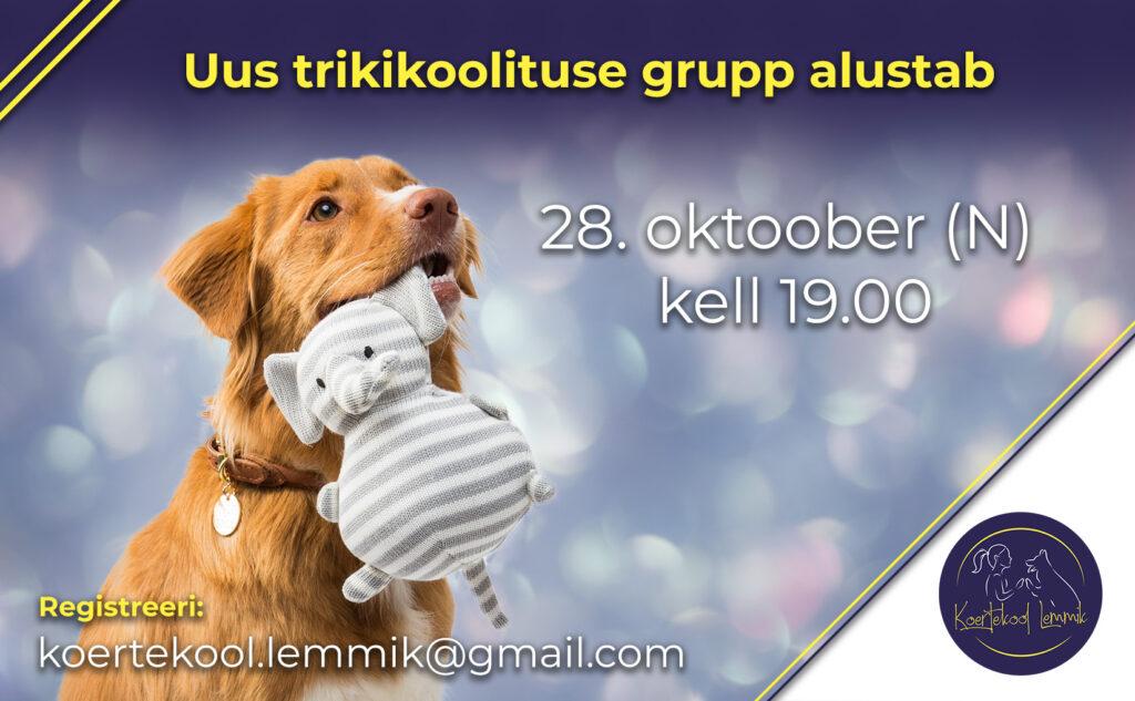 trikid oktoober 21